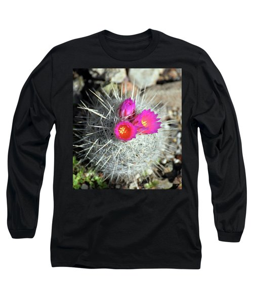 Chihuahua Snowball 1 Long Sleeve T-Shirt