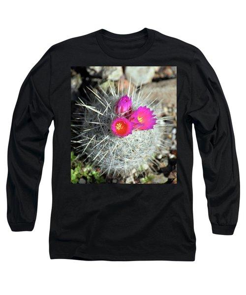 Chihuahua Snowball 1 Long Sleeve T-Shirt