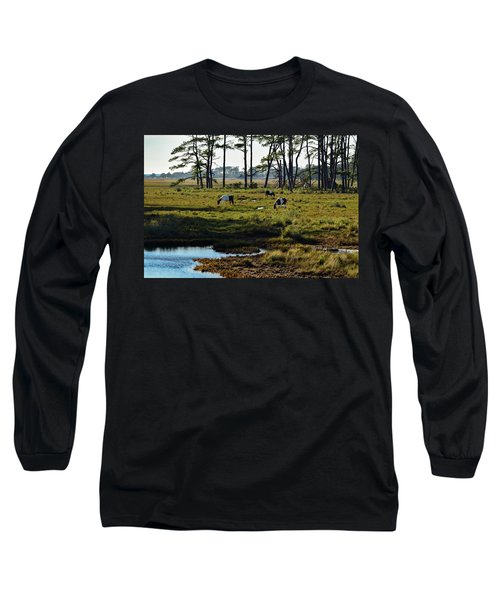Chincoteague Ponies Long Sleeve T-Shirt