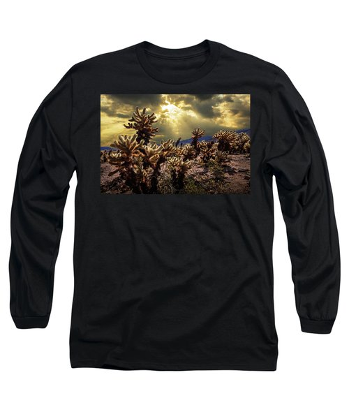 Long Sleeve T-Shirt featuring the photograph Cholla Cactus Garden Bathed In Sunlight In Joshua Tree National Park by Randall Nyhof