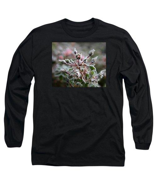 Christmas Miniature Rosebuds Long Sleeve T-Shirt