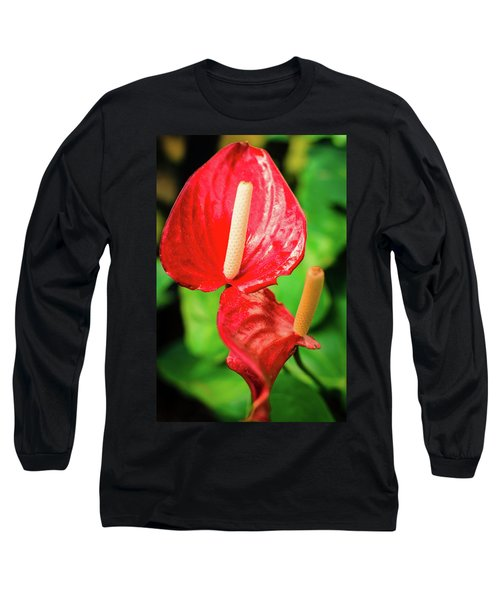 City Garden Flowers Long Sleeve T-Shirt