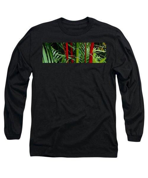 Close-up Of Bamboo Trees, Hawaii, Usa Long Sleeve T-Shirt