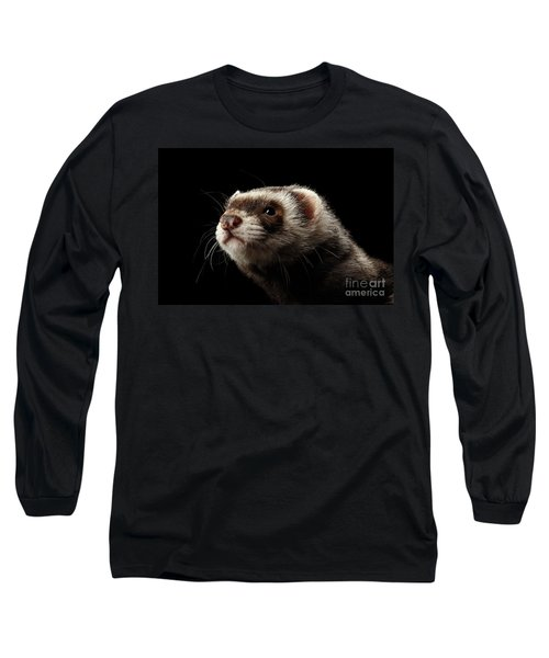 Closeup Portrait Of Funny Ferret Looking At The Camera Isolated On Black Background, Front View Long Sleeve T-Shirt