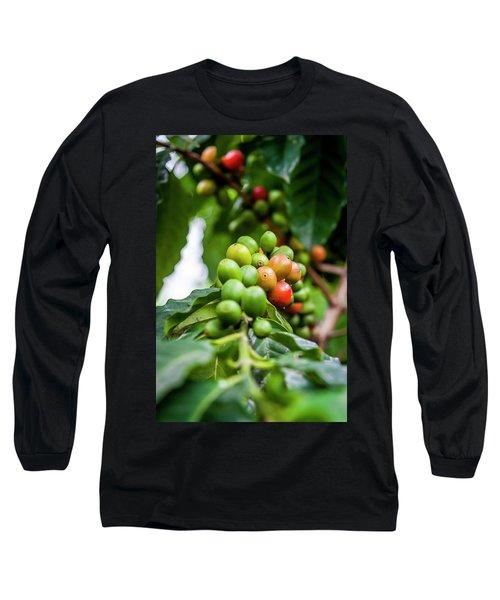 Coffee Plant Long Sleeve T-Shirt