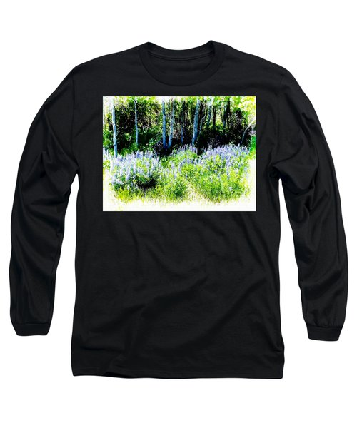 Colorado Apens And Flowers Long Sleeve T-Shirt by Joseph Hendrix