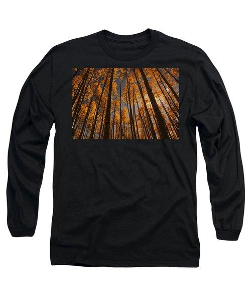 Colorado Aspens Long Sleeve T-Shirt