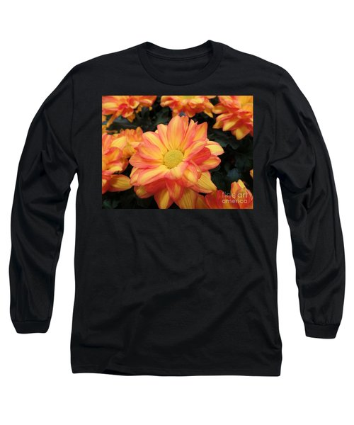 Long Sleeve T-Shirt featuring the photograph Colorful Mums by Ray Shrewsberry