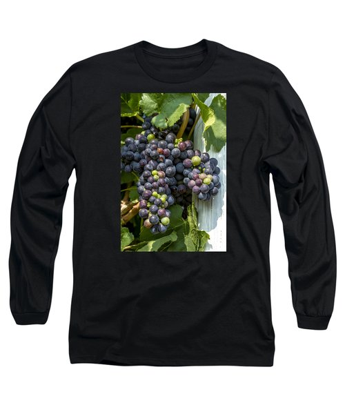Colorful Wine Grapes On Grapevine Long Sleeve T-Shirt