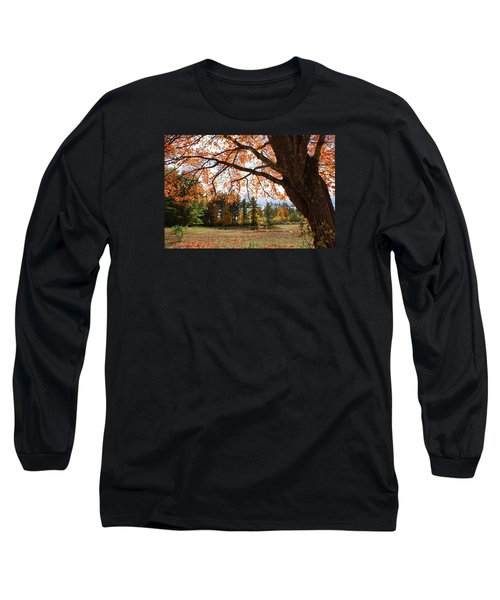 Colors Of Fall Long Sleeve T-Shirt by Lois Lepisto