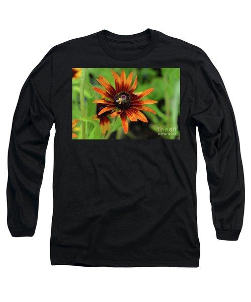 Cone Flower Long Sleeve T-Shirt by Eva Kaufman