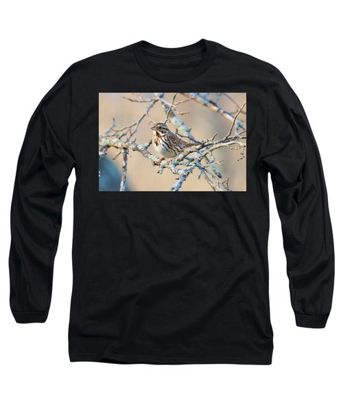 Confident Sparrow Long Sleeve T-Shirt