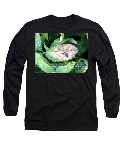 Consider The Lilies Long Sleeve T-Shirt by Russell Keating