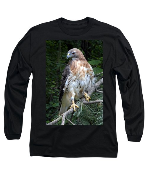 Coopers Hawk Long Sleeve T-Shirt