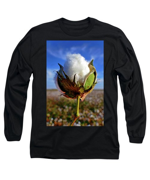 Long Sleeve T-Shirt featuring the photograph Cotton Pickin' by Skip Hunt
