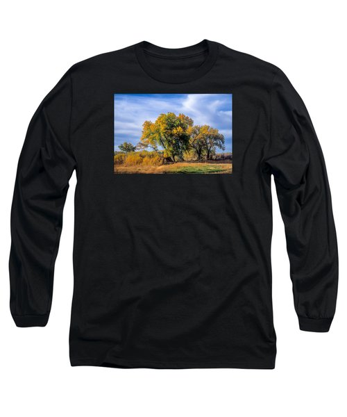 Cottonwood #1 Tree On Ranch Land In Colorado Fall Colors Long Sleeve T-Shirt by John Brink