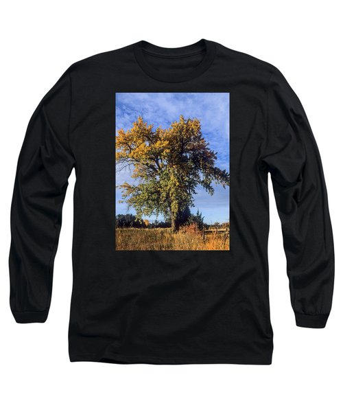 Cottonwood #3 Colorado Ranch Country In Fall Long Sleeve T-Shirt by John Brink
