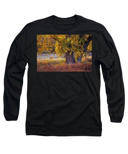 Cottonwood #6 Fountain Creek, Colorado In Fall Long Sleeve T-Shirt by John Brink