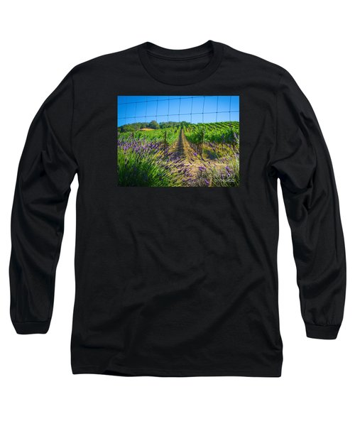 Country Lavender V Long Sleeve T-Shirt
