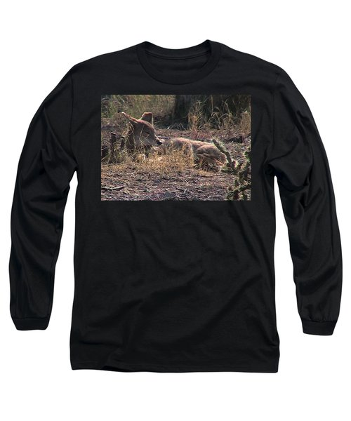 Resting Coyote Long Sleeve T-Shirt