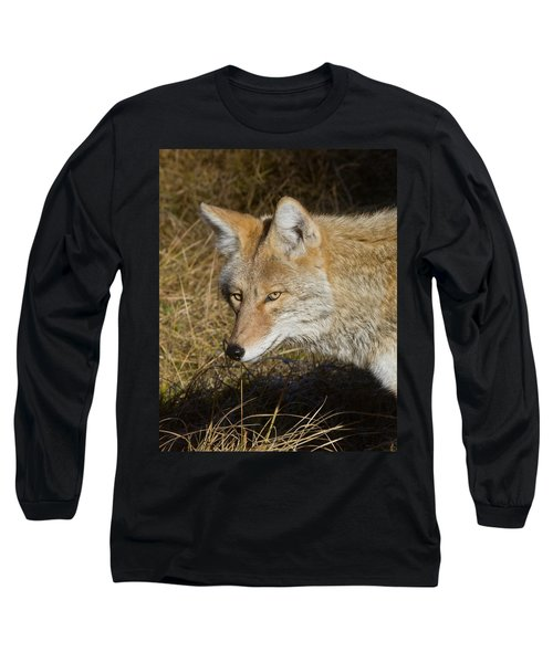 Coyote In The Wild Long Sleeve T-Shirt