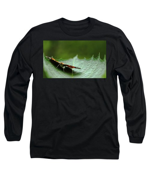 Long Sleeve T-Shirt featuring the photograph Cradled Painted Lady by Debbie Oppermann
