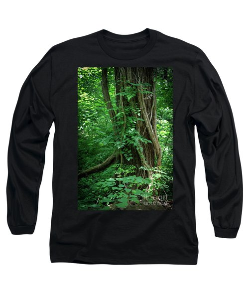 Creek And Wood At Roman Nose State Park #2 Long Sleeve T-Shirt