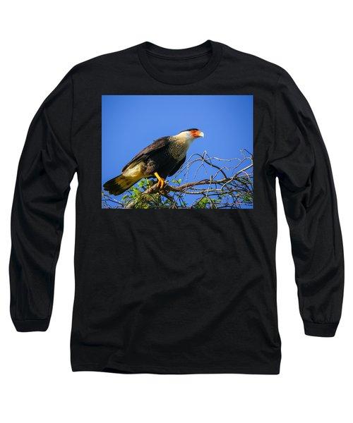Crested Caracar Long Sleeve T-Shirt
