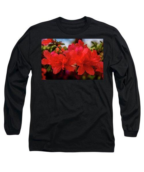 Crimson Lights Long Sleeve T-Shirt