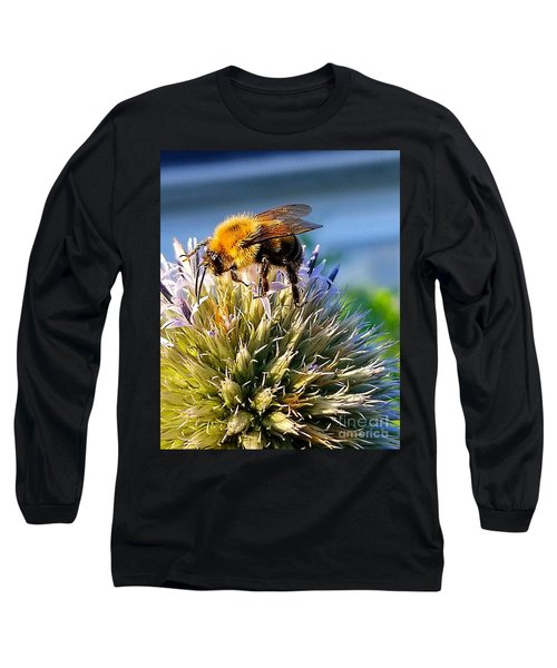 Curious Bee Long Sleeve T-Shirt