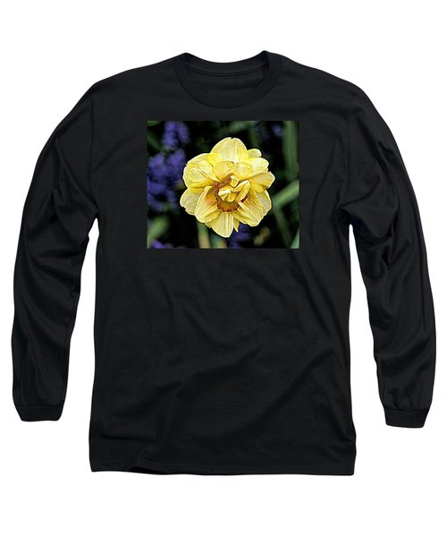 Long Sleeve T-Shirt featuring the photograph Daffodil Dallas Arboretum by Diana Mary Sharpton
