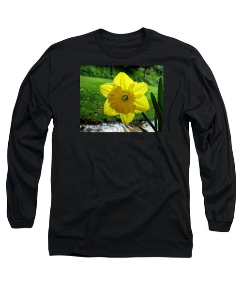 Daffodile In The Rain Long Sleeve T-Shirt