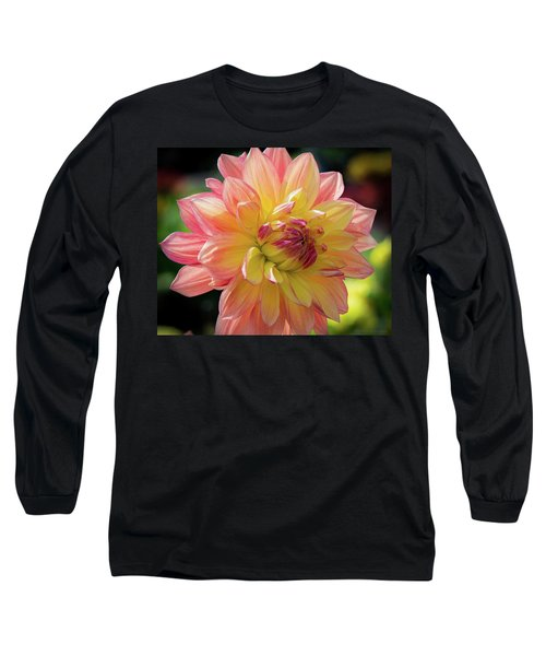 Dahlia In The Sunshine Long Sleeve T-Shirt by Phil Abrams