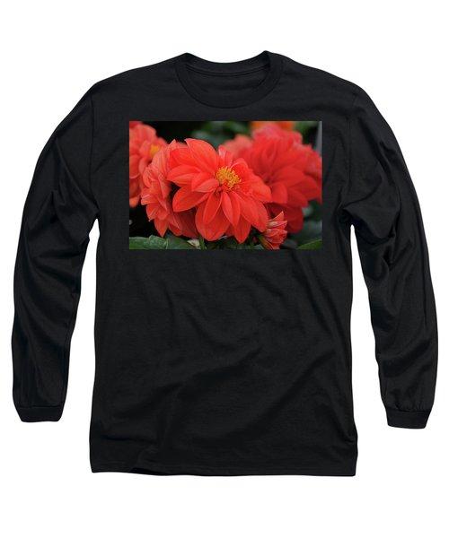Dahlia Bloomer Long Sleeve T-Shirt by Ronda Ryan