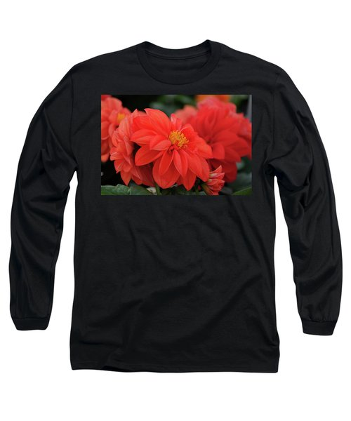 Dahlia Bloomer Long Sleeve T-Shirt