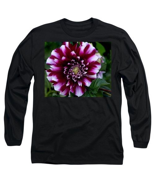 Long Sleeve T-Shirt featuring the photograph Dahlia by Denise Romano