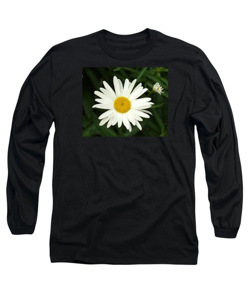 Daisy Days Long Sleeve T-Shirt by Carol Sweetwood