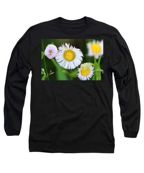 Daisy Fleabane Long Sleeve T-Shirt