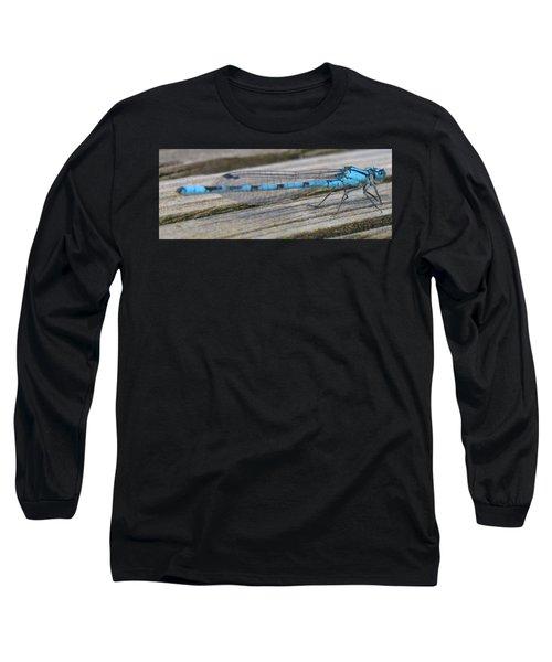 Damselfly Long Sleeve T-Shirt by Darren Carpenter