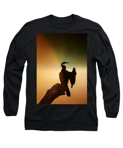 Darter Bird With Misty Sunrise Long Sleeve T-Shirt