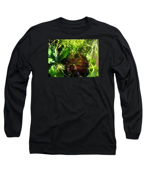Dawning Succulents Long Sleeve T-Shirt