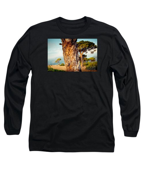 Dead Tree And Forest  Long Sleeve T-Shirt