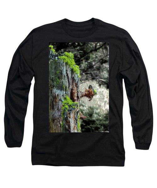 Death And Life Along The Path Long Sleeve T-Shirt