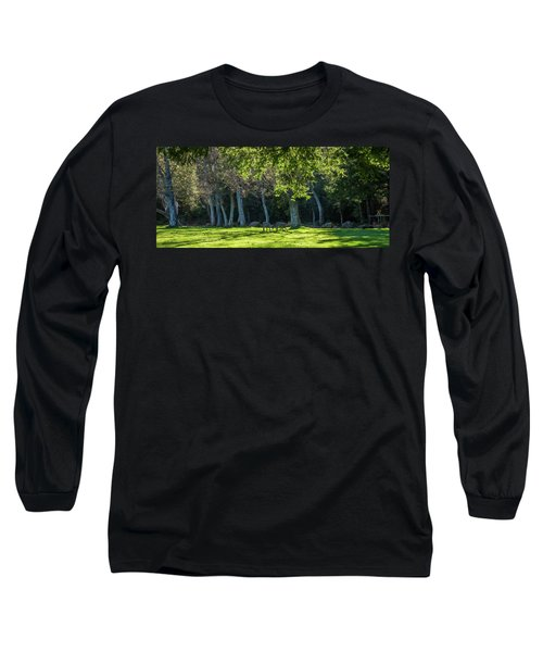 Deer In The Afternoon Sun Long Sleeve T-Shirt