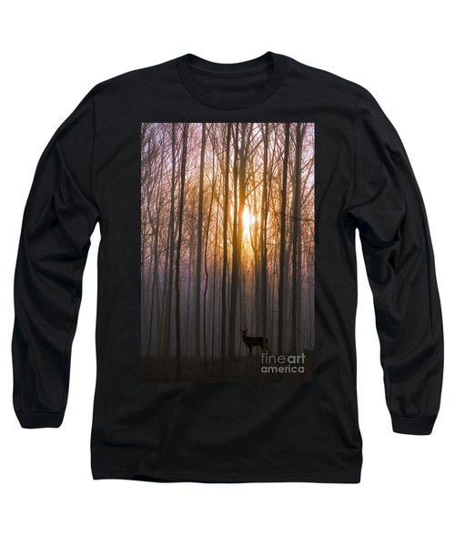 Deer In The Forest At Sunrise Long Sleeve T-Shirt by Diane Diederich