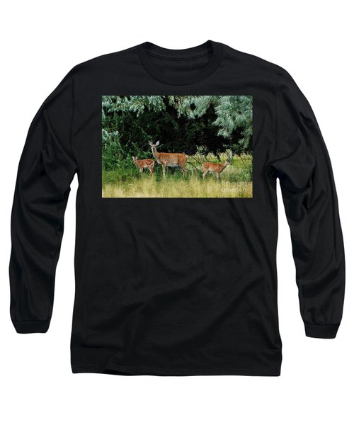 Deer Mom Long Sleeve T-Shirt by Larry Campbell