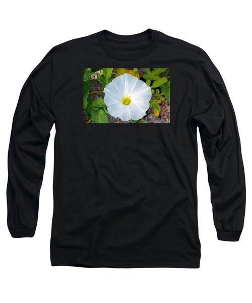 Delicate Beach Flower Long Sleeve T-Shirt by Kenneth Albin