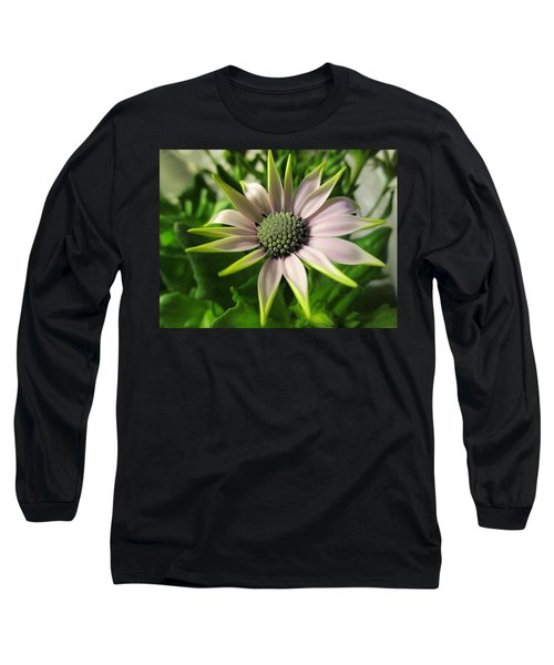 Delicate Dreamer Long Sleeve T-Shirt