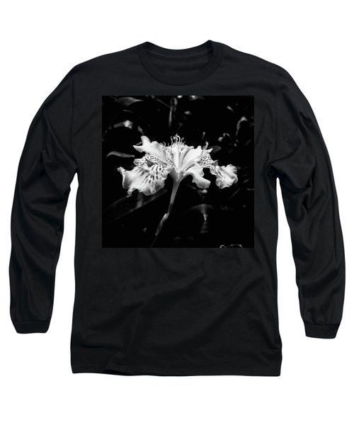 Delicate Long Sleeve T-Shirt