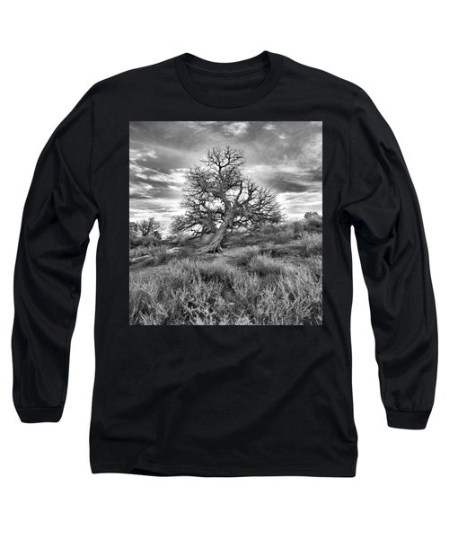 Devils Canyon Tree Long Sleeve T-Shirt